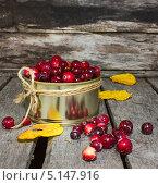 Купить «Клюква в жестяной баночке», эксклюзивное фото № 5147916, снято 11 октября 2013 г. (c) Наталья Осипова / Фотобанк Лори