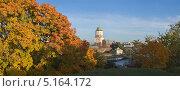 Купить «Вид на Выборг и Выборгский замок с Петровской горы», фото № 5164172, снято 5 октября 2013 г. (c) Александр Рощин / Фотобанк Лори
