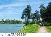 Школьное озеро, Зеленоград (2011 год). Стоковое фото, фотограф Володина Ольга / Фотобанк Лори