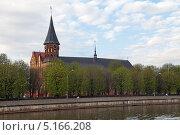 Купить «Кёнигсбергский кафедральный собор, город Калининград», фото № 5166208, снято 3 мая 2013 г. (c) Игорь Долгов / Фотобанк Лори