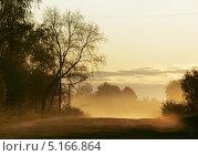 Утренний туман на дороге. Стоковое фото, фотограф Ирина Литвин / Фотобанк Лори