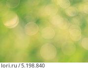 Фон боке в желто-зеленых тонах. Стоковое фото, фотограф daniel0 / Фотобанк Лори