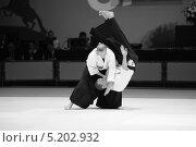 Приемы мастеров айкидо (2013 год). Редакционное фото, фотограф Анатолий Дьяков / Фотобанк Лори