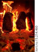 Купить «Горящие дрова в камине», фото № 5214460, снято 12 июля 2013 г. (c) Татьяна Белова / Фотобанк Лори