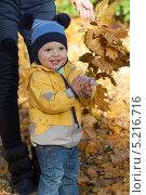 Малыш в желтой курточке гуляет с мамой в осеннем парке. Стоковое фото, фотограф Мороз Елена / Фотобанк Лори