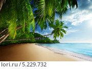 Закат на пляже Anse Takamaka, остров Маэ, Сейшельские острова. Стоковое фото, фотограф Iakov Kalinin / Фотобанк Лори