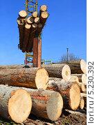 Купить «Заготовка древесины», фото № 5230392, снято 17 апреля 2013 г. (c) Швадчак Василий / Фотобанк Лори