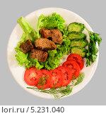 Тушёное мясо с зеленью и овощами. Стоковое фото, фотограф Сергей Огарёв / Фотобанк Лори