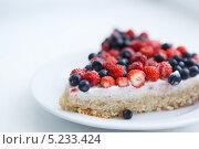 Купить «Кусок пирога с земляникой и черникой на белой тарелке», фото № 5233424, снято 12 июня 2013 г. (c) Dmytro Panchenko / Фотобанк Лори
