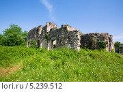 Древние развалины. Стоковое фото, фотограф Алексей Хоруженко / Фотобанк Лори