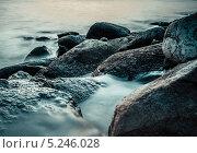 Балтийский берег. Стоковое фото, фотограф Евгений Якимов / Фотобанк Лори