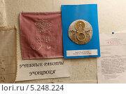 Купить «Золотое шитье», эксклюзивное фото № 5248224, снято 1 ноября 2013 г. (c) Дмитрий Неумоин / Фотобанк Лори