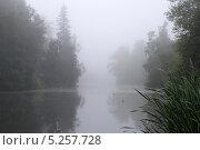 Туман над озером. Стоковое фото, фотограф Олег Пластинин / Фотобанк Лори