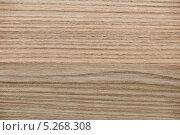 Купить «Деревянная фактура крупным планом - фон», фото № 5268308, снято 3 сентября 2013 г. (c) Elnur / Фотобанк Лори