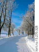 Купить «Зимний городской парк», фото № 5270328, снято 20 января 2011 г. (c) ElenArt / Фотобанк Лори
