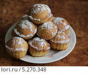 Кексы, посыпанные сахарной пудрой, на тарелке. Стоковое фото, фотограф Юлия Зориктуева / Фотобанк Лори