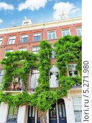 Купить «Амстердам с типичными домами, утопающими в зелени», фото № 5271980, снято 19 сентября 2013 г. (c) Vitas / Фотобанк Лори