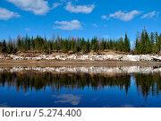 Берега Подкаменной. Стоковое фото, фотограф Алексей Леонтьев / Фотобанк Лори