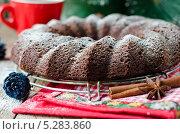 Купить «Шоколадный рождественский пирог», фото № 5283860, снято 17 февраля 2011 г. (c) Татьяна Пинчук / Фотобанк Лори