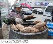 Купить «Клубни батата», фото № 5284692, снято 16 ноября 2013 г. (c) Корнилова Светлана / Фотобанк Лори