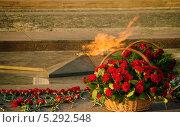 Купить «Вечный огонь на долгую память», фото № 5292548, снято 20 октября 2013 г. (c) Алексей Назаров / Фотобанк Лори