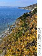 Купить «Яркий, контрастный, морской осенний пейзаж,черное море», фото № 5299264, снято 17 ноября 2013 г. (c) Игорь Архипов / Фотобанк Лори