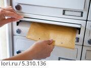 Купить «женская рука бросает конверт в почтовый ящик», фото № 5310136, снято 10 августа 2013 г. (c) Андрей Попов / Фотобанк Лори