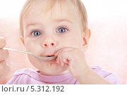 Купить «Маленького ребенка кормят детской кашей», фото № 5312192, снято 4 ноября 2013 г. (c) Галина Михалишина / Фотобанк Лори