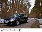 Купить «Mercedes-Benz B200 на фоне соснового бора», фото № 5319344, снято 19 апреля 2013 г. (c) Ольга Денисова / Фотобанк Лори