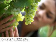 Купить «Молодая женщина рассматривает виноград на ветке», фото № 5322248, снято 17 сентября 2010 г. (c) Phovoir Images / Фотобанк Лори