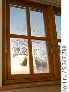 Купить «Вид из окна на зимний солнечный вечер», фото № 5347788, снято 8 декабря 2010 г. (c) Татьяна Кахилл / Фотобанк Лори