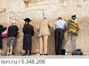 Купить «Молитва у Стены Плача в Иерусалиме», эксклюзивное фото № 5348208, снято 22 ноября 2013 г. (c) Михаил Ворожцов / Фотобанк Лори