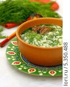 Купить «Токмач по-татарски или суп-лапша домашняя», фото № 5350488, снято 6 декабря 2013 г. (c) Гульсинэ / Фотобанк Лори
