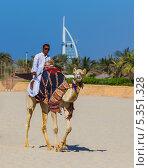 Купить «Мужчина верхом на верблюде, ОАЭ», фото № 5351328, снято 11 ноября 2013 г. (c) Олег Жуков / Фотобанк Лори