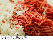 Купить «Фарш мясной с луком», фото № 5365576, снято 28 октября 2013 г. (c) Morgenstjerne / Фотобанк Лори