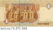 Купить «Египетские деньги. Один фунт. Лицевая сторона», эксклюзивная иллюстрация № 5371104 (c) Юрий Морозов / Фотобанк Лори