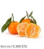 Купить «Спелые мандарины с листьями, изолированно на белом фоне», фото № 5389572, снято 31 октября 2010 г. (c) Natalja Stotika / Фотобанк Лори