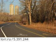 Купить «Остров Татышев в Красноярске», фото № 5391244, снято 15 декабря 2013 г. (c) Светлана Грызлова / Фотобанк Лори