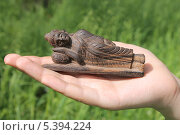 Купить «Спящий Будда на ладони», эксклюзивное фото № 5394224, снято 26 мая 2013 г. (c) Ната Антонова / Фотобанк Лори