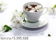 Чай с цветами. Стоковое фото, фотограф Анастасия Кунденкова / Фотобанк Лори
