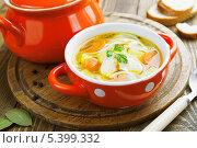Куриный суп. Стоковое фото, фотограф Надежда Мишкова / Фотобанк Лори