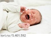 Купить «Новорожденный ребенок плачет», фото № 5401592, снято 12 декабря 2013 г. (c) Дмитрий Калиновский / Фотобанк Лори