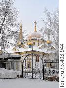 Вознесенский кафедральный собор. Новосибирск (2010 год). Стоковое фото, фотограф Наталья Раковская / Фотобанк Лори