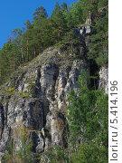 Скала Уральских гор с деревьями. Стоковое фото, фотограф Ольга Старшова / Фотобанк Лори