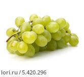Купить «Гроздья винограда на белом фоне», фото № 5420296, снято 12 июля 2011 г. (c) Natalja Stotika / Фотобанк Лори