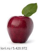 Купить «Красное яблоко с зеленым листом», фото № 5420972, снято 4 июля 2011 г. (c) Natalja Stotika / Фотобанк Лори