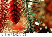 Новогодняя шишка. Стоковое фото, фотограф Вячеслав Сапрыкин / Фотобанк Лори