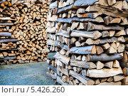 Купить «Колотые дрова», фото № 5426260, снято 3 октября 2012 г. (c) Маргарита Бородина / Фотобанк Лори