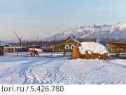 Зимнее утро в деревне (2013 год). Стоковое фото, фотограф Виктория Катьянова / Фотобанк Лори