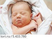 Купить «Спящий новорожденный ребенок в пеленках», фото № 5433780, снято 15 декабря 2013 г. (c) Дмитрий Калиновский / Фотобанк Лори